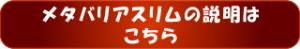 メタバリアボタン①.fw